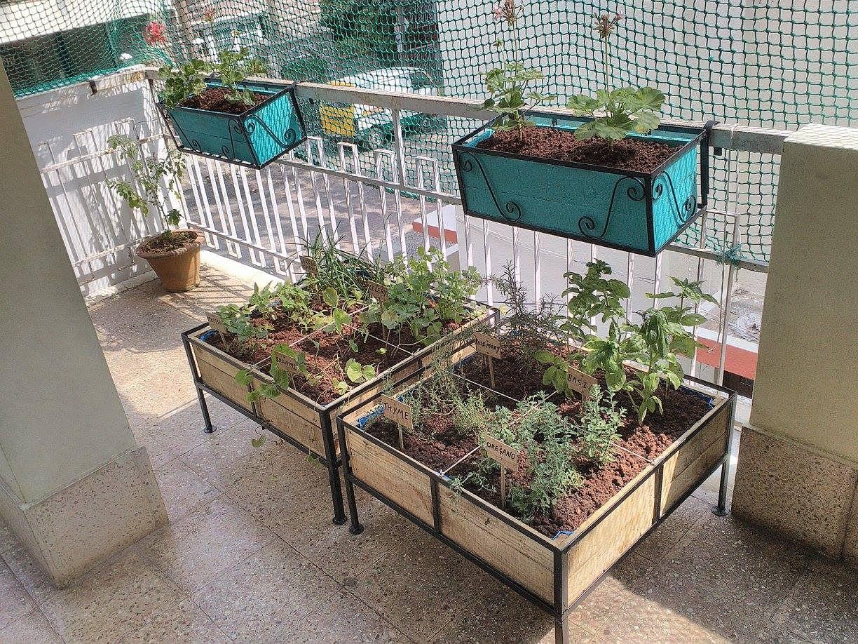 Munchkins Montessori Garden Photo Credit: My Sunny Balcony