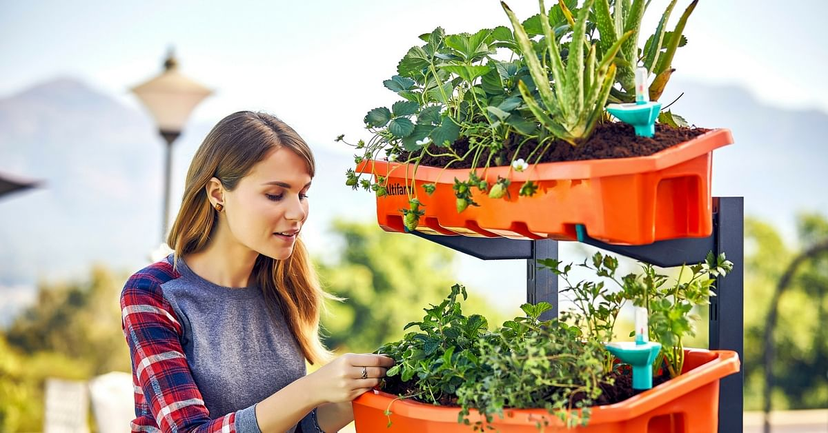 Swooning Over China's Vertical Gardens? Just Grow a Vertical Garden in Your Own Terrace!