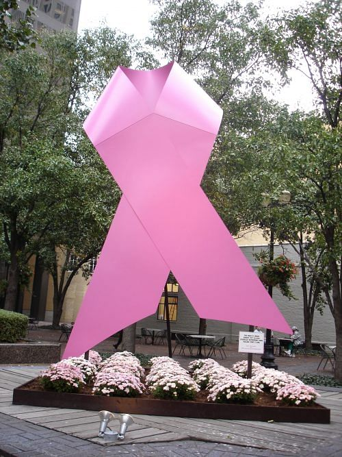 Source: By Jason Meredith from Louisville, KY, US (Breast Cancer Awareness) [CC BY 2.0], via Wikimedia Commons