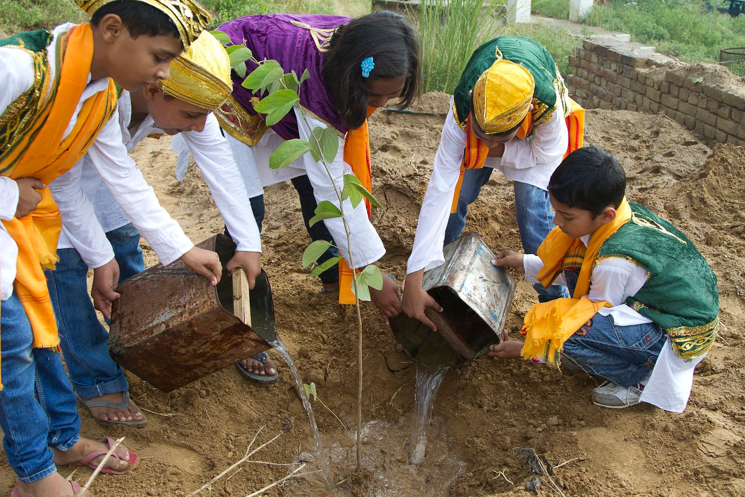 Planting as part of non formal education.
