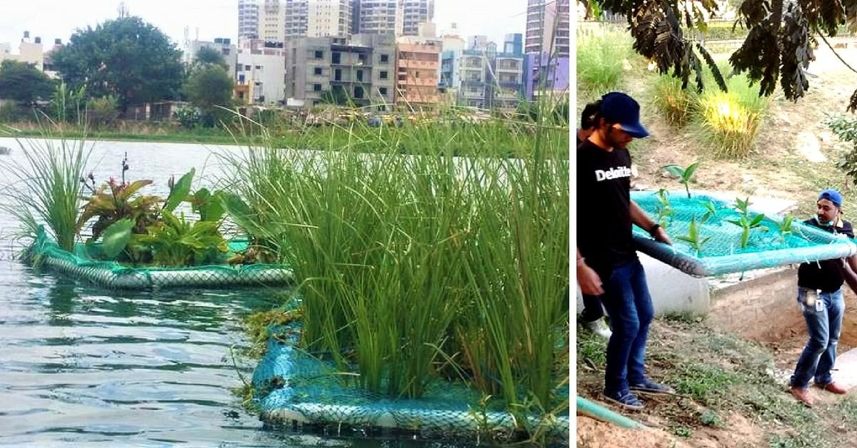 Bellandur Lake Fire: 5 Ways India Can Revive Its Polluted Urban Water Bodies