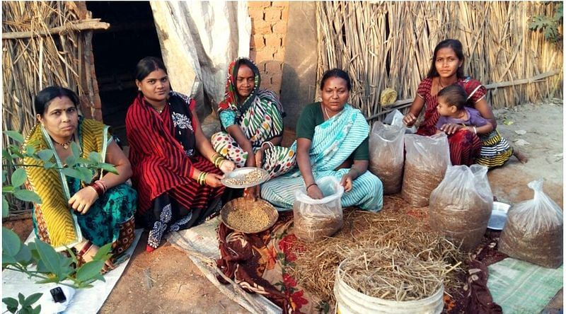 How an Organisation Used Mushroom Cultivation to Empower Women