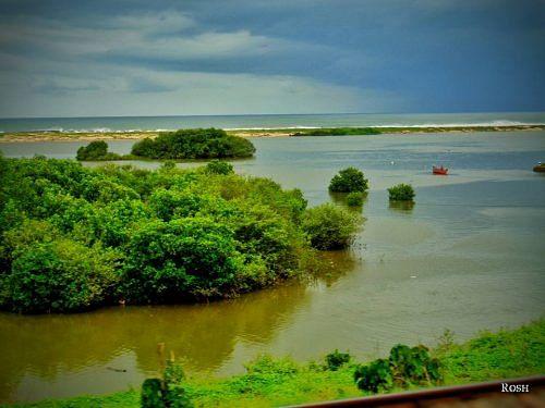 kerala river 1