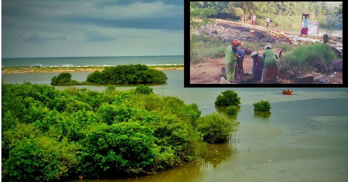 No Water Wars Here: How 2 Villages on Kerala-Karnataka Border Share Water Every Year