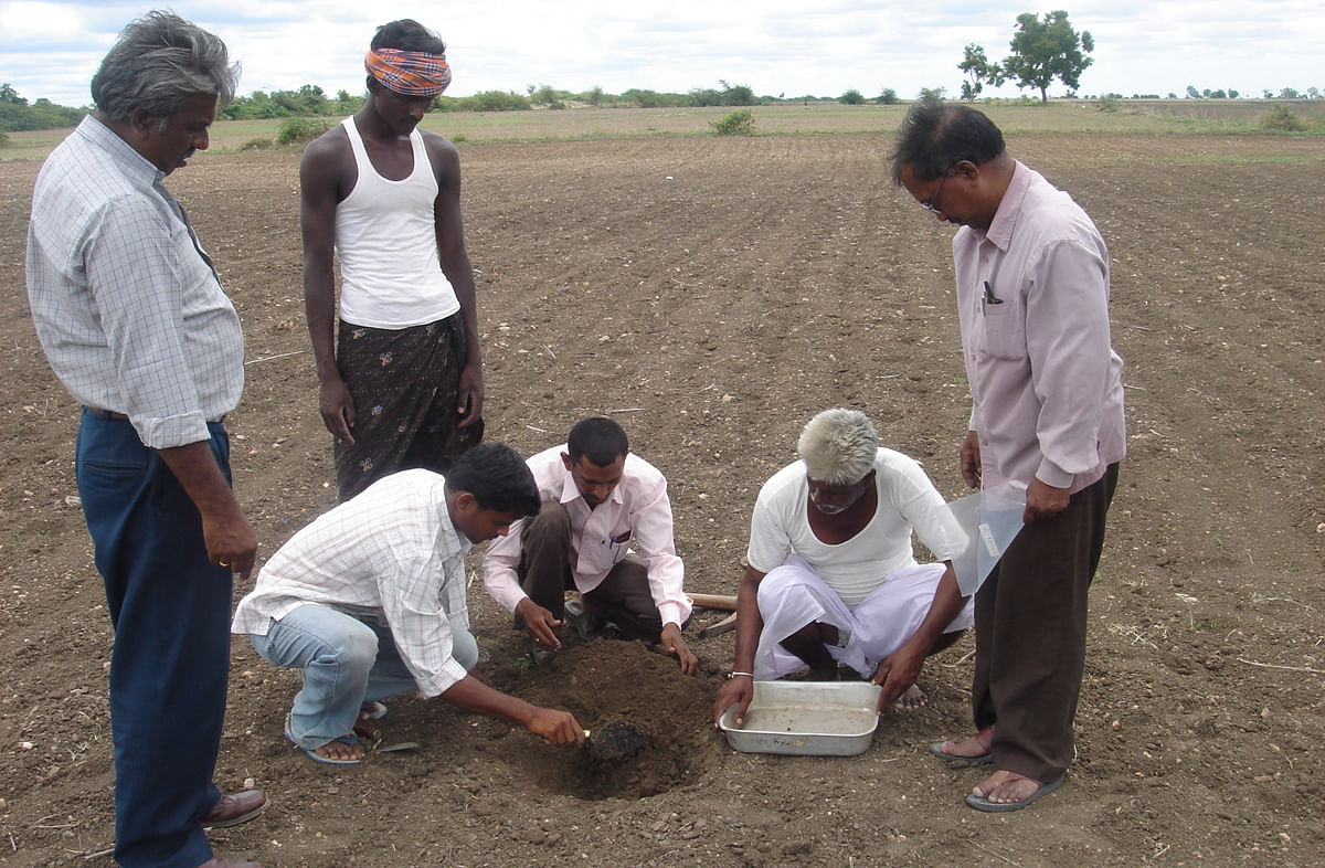 soil-management-copy