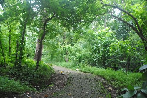 Mahim Nature Park S Journey From A Garbage Dump To A Mini