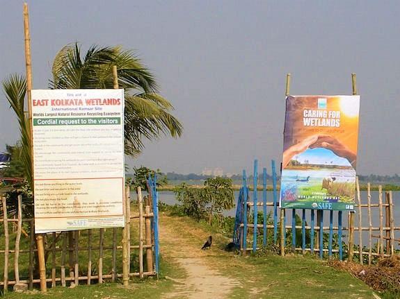 wwd2010-india-safe02
