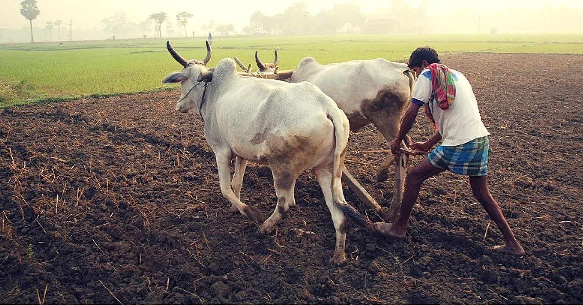 500 Techies in Chennai Are on a Mission to Help Families of Farmers Wrecked by Drought