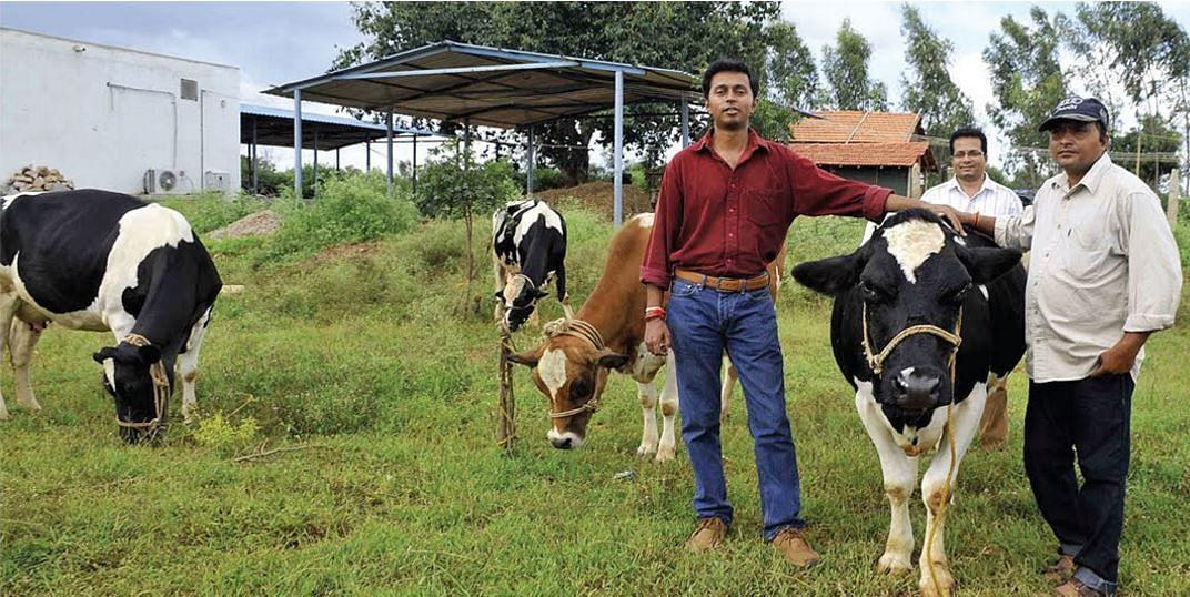 H F Cattle India Santosh-D-Singh...
