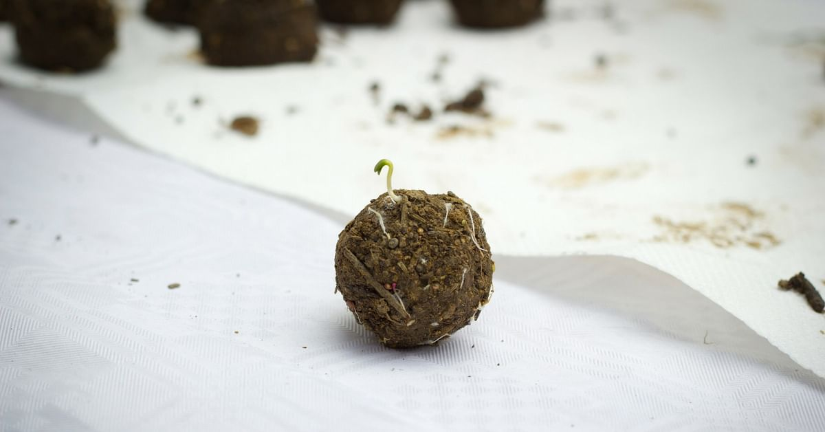 From Homes to Jungles, These Easy-To-Make Seed Bombs Are Enabling Indians to Grow Plants Anywhere