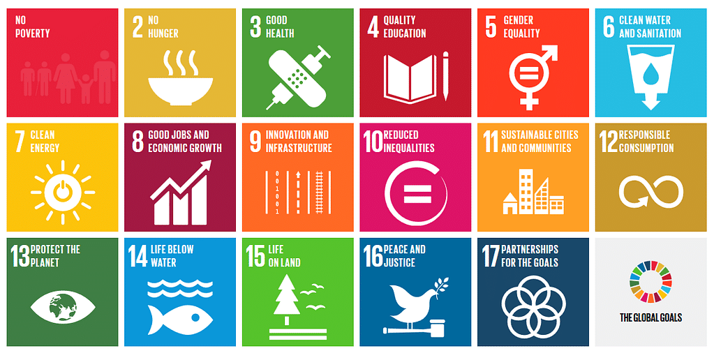 Image result for SDG india