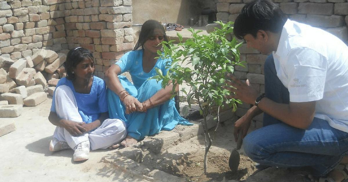 importance of tree plantation in hindi