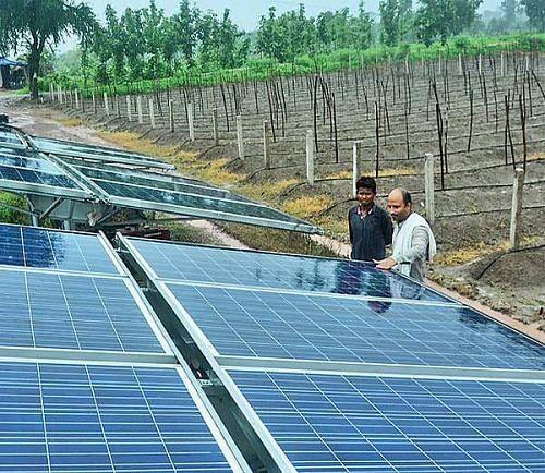 As an Engineer He Earned Rs 24 Lakh  As a Farmer He Earns Rs