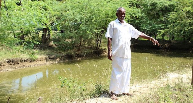 Balakrishnan Marimuthu dug two farm ponds, with which he grew coconuts to offset paddy loss this year. (Photo by Sharada Balasubramanian)