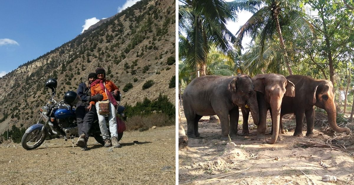 Bidding Goodbye to City Life & Well-Paid Jobs, This Couple Now Takes Care of 3 Retired Elephants