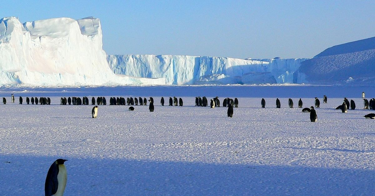 From India to Antarctica: First-Ever Indian Luxury Cruise to Continent Will Set Sail This December!