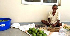 Chopping organically grown raw mangoes