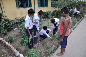 hyderabad-govt-school-plantation-saplings