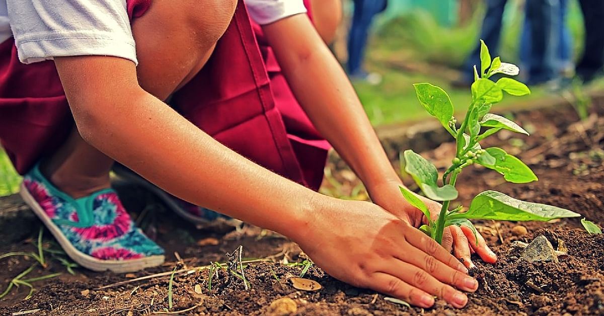 Tracing the Origins of Van Mahotsav, a Week-Long, Nation-Wide Festival That's All About Trees!