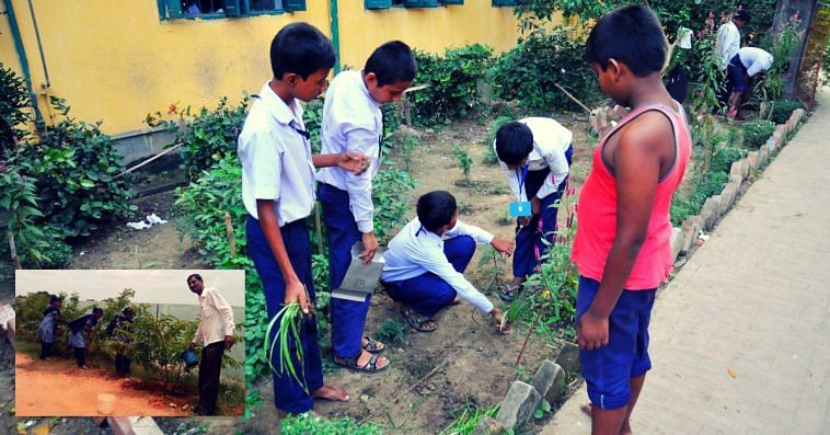 hyderabad-govt-school-plantation-saplings