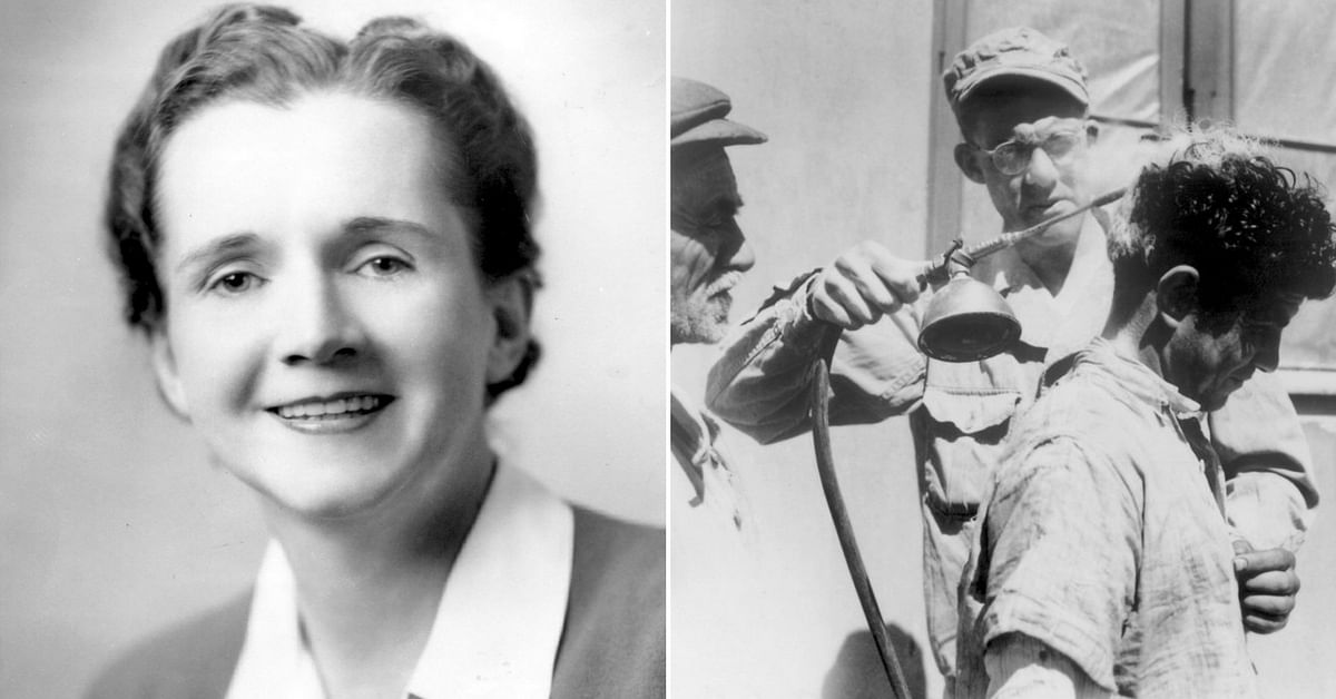 Mocked for Being a 'Woman Studying Genetics,' How Rachel Carson Got DDT Banned