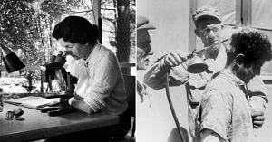 Rachel Carson-Silent Spring (2)