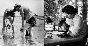 Rachel Carson-Silent Spring