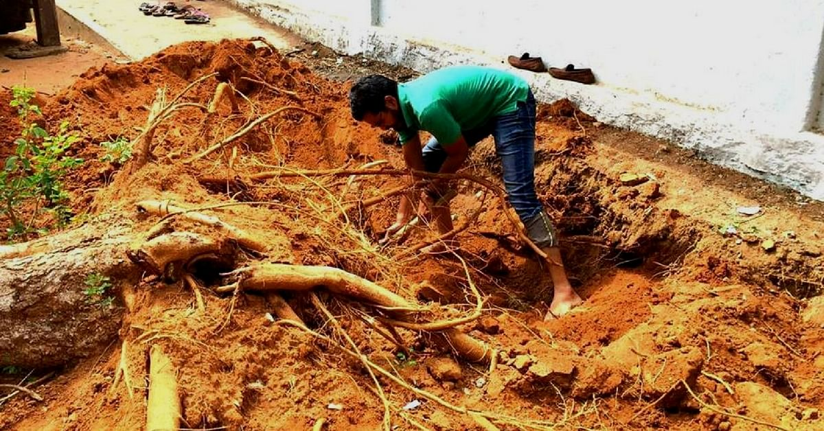 This Hyderabad Organisation is Saving trees – by Moving Them One at a Time!
