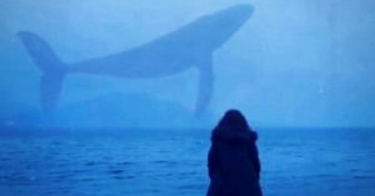 Not Just a Game Anymore: Blue Whale Challenge and What We Can Do About It