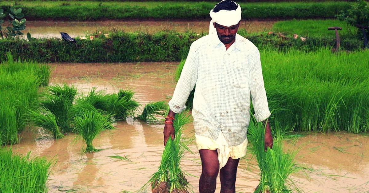 How an MP Village Inspired an Entire District to Use Their Water Bodies in Impactful Ways