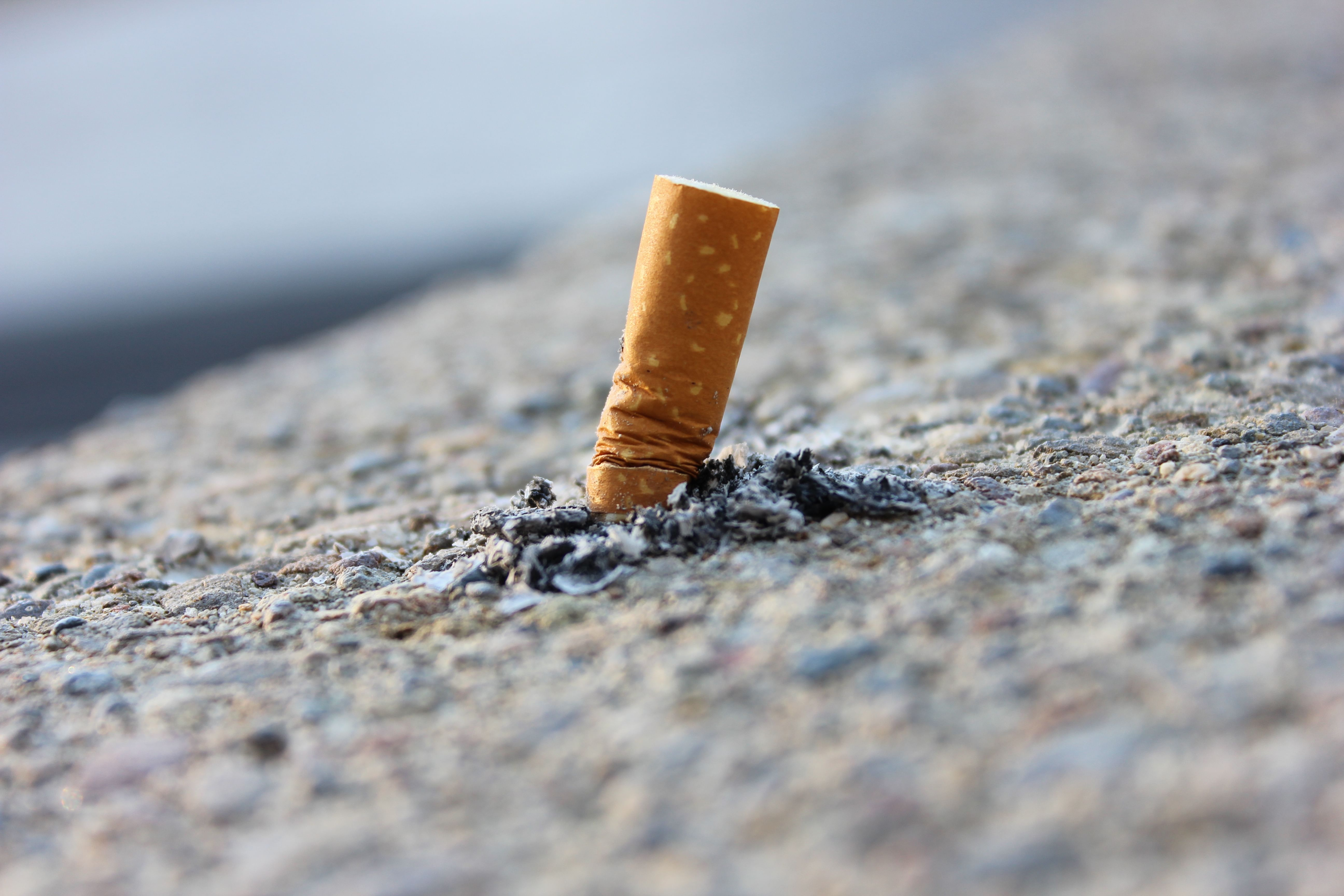 cigarette-butts-road-construction-research