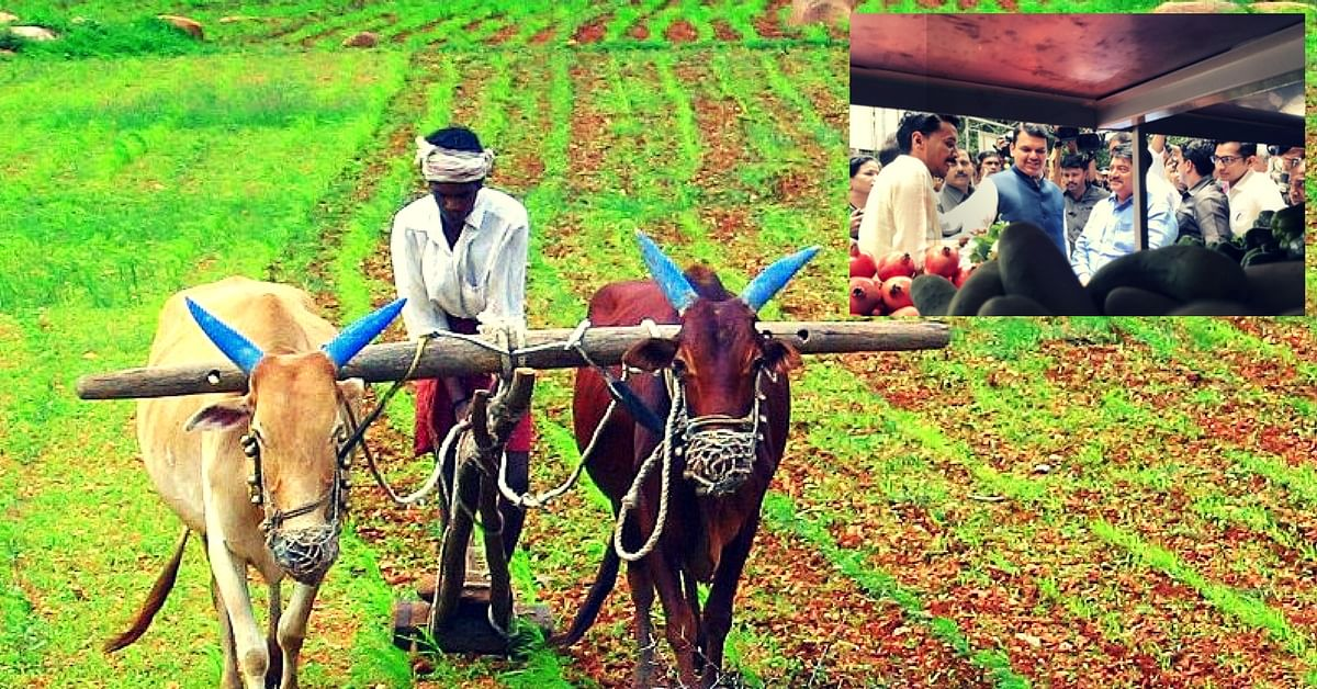 From Farm to Home: Maharashtra Farmers to Reach Consumers Directly With 125 Vans!