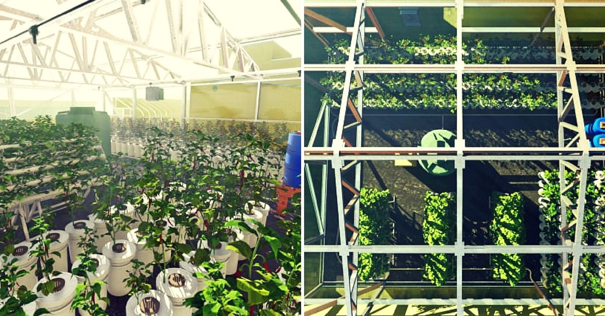 hydroponic farm- old age homes- Srihari Kanchala