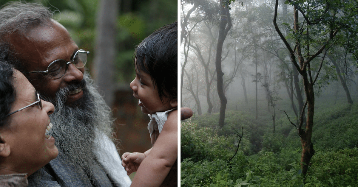 This Family Did Not Send Their Children to School, but Taught Them by Creating a Forest