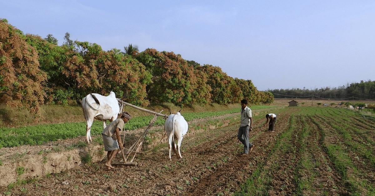 Karnataka Commerce Graduate Invents New Plough for Small Farmers