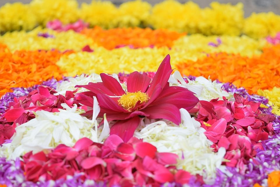 10 days of onam pookalams to onasadhya heres all you need to know atham m4hsunfo