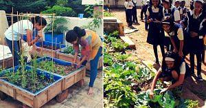 pune-techie-organic farming (1)