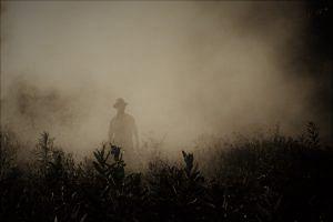 Burning crop stubs
