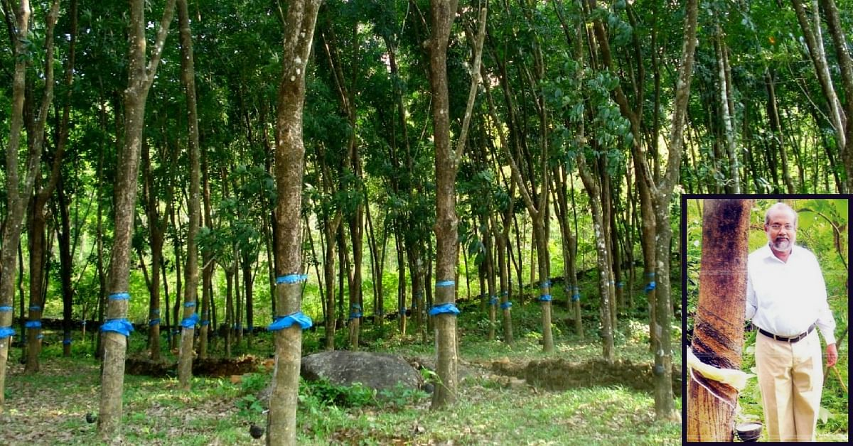 After 35 Years of Experimentation, This Kerala Priest's New Rubber Variety Offers a Double Yield!