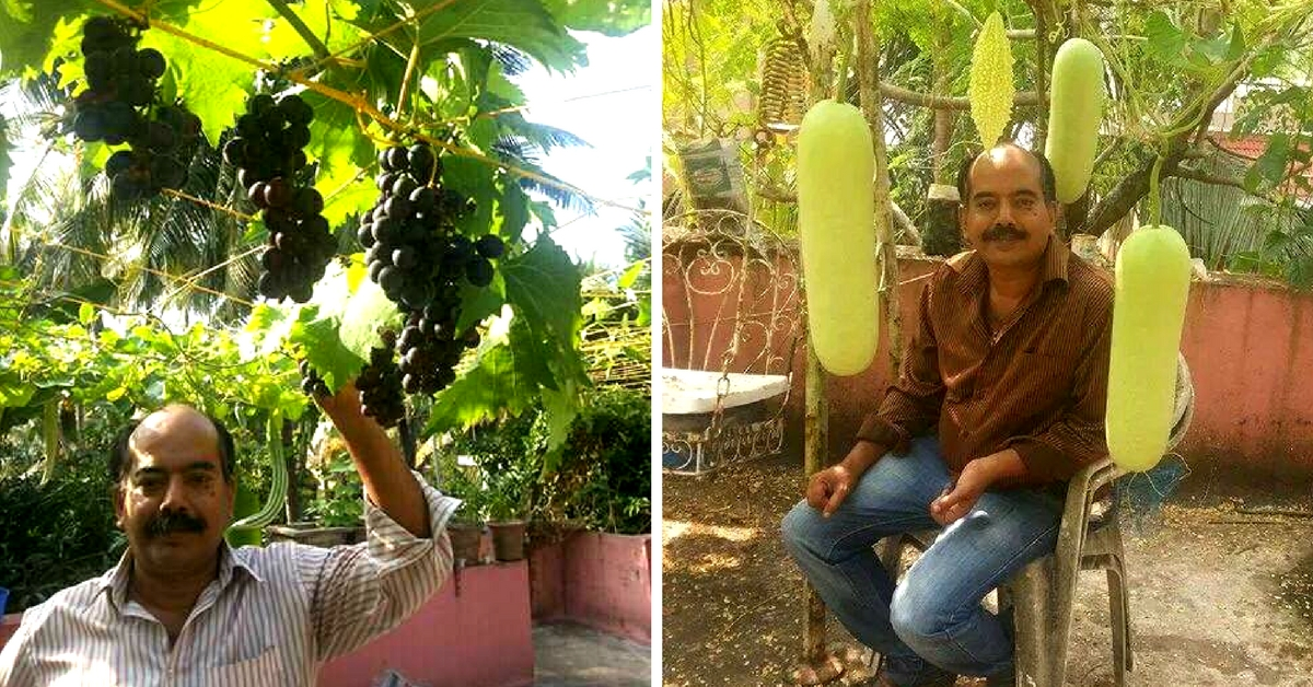 Jackfruits and Grapes in a Pot? This Mangalore Man Has Been Doing it For Years!