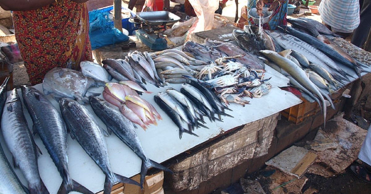 Want to Keep Indian Seas Safe? Change the Way You Eat Fish