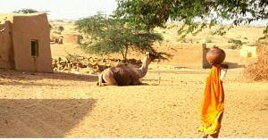 A village in India. Picture for representative purposes only. Picture Courtesy: Wikipedia.