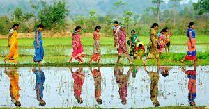 Dalit women farmers Marathwada