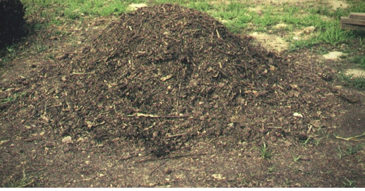 Pile of compost. Picture for representative purposes only. Picture Courtesy: Wikipedia.