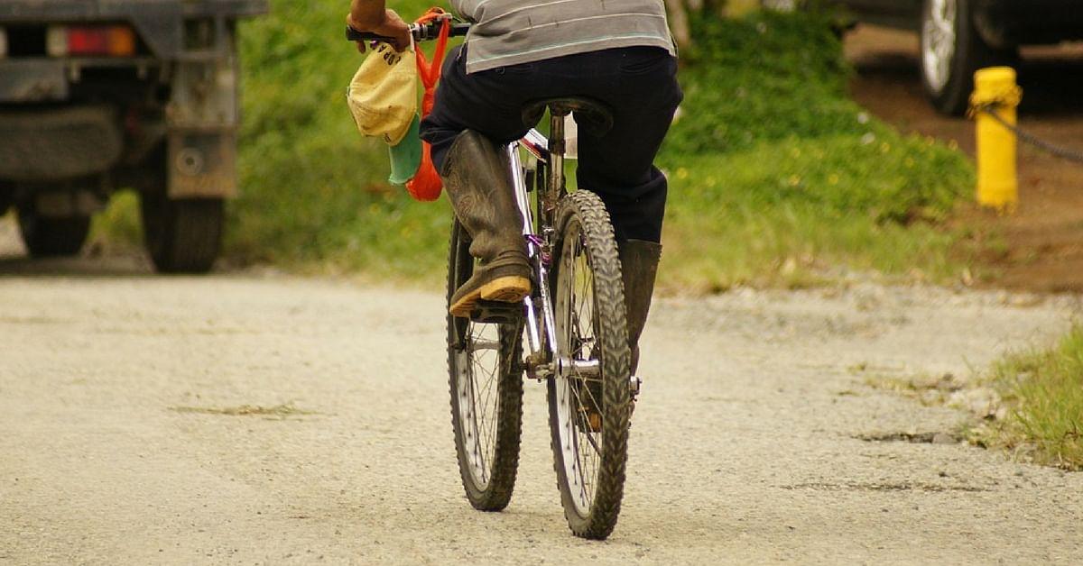 bicycle sharing cycles