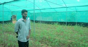 Milind Patil in his nursery in Pinguli village of Sindhudurg district. (Photo by Hiren Kumar Bose)