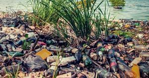 Rubbish clogs the lake, and affects it adversely. Representative image only. Image Courtesy: Pixabay.