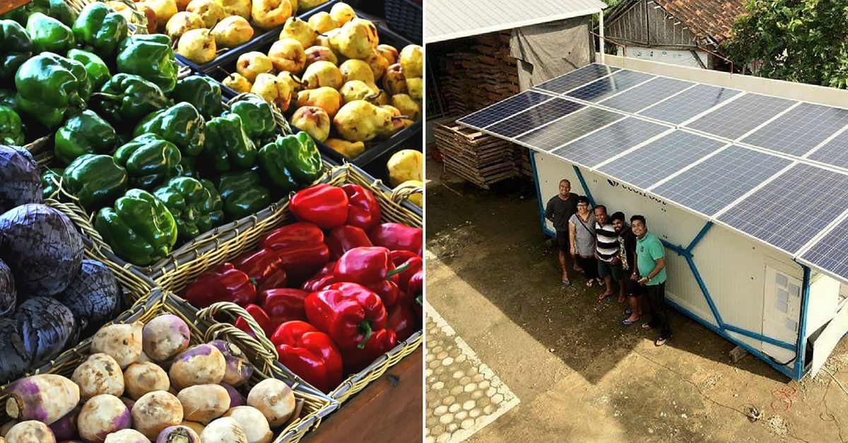 Your Produce will Stay Fresher, Thanks to This Solution by the IIT Alumni