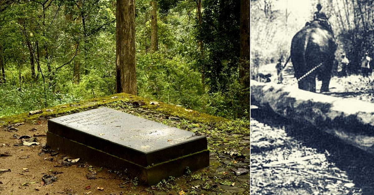 This Forgotten Scotsman Is The Reason Why The Anamalai Hills Are Still Lush With Trees