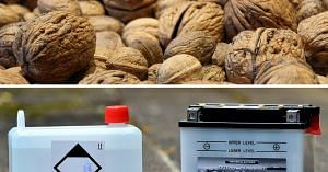Walnut shells can be used in making cheaper batteries. Representative image only.